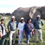 ladies with elephant