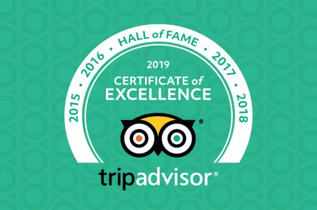 Trip Advisor reviews - Hall of Fame