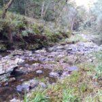 Brackenburn Nature Reserve